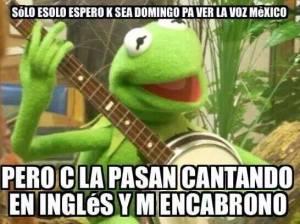 meme 3